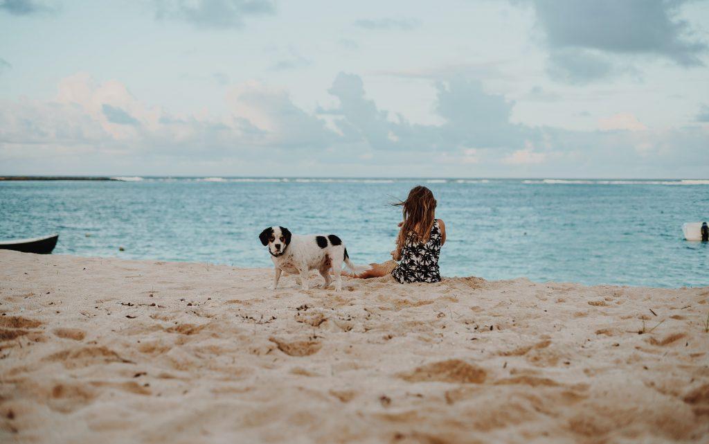 Dog and Girl Beach
