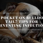 What exactly is a Tail Pocket?