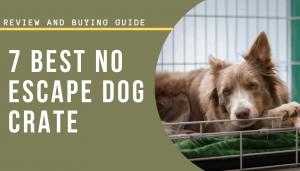 no escape dog crate