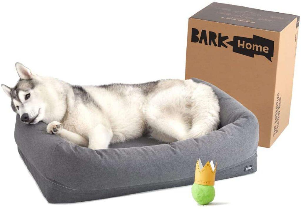 BarkBox Memory Best Durable Foam Dog Bed