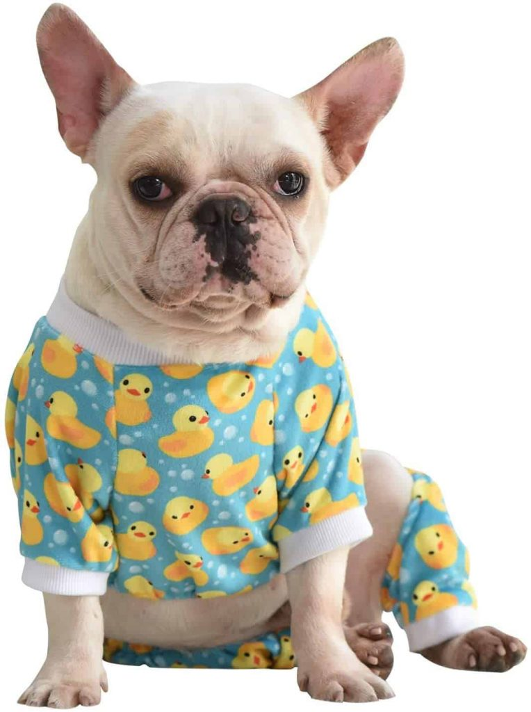 CuteBone Dog Winter Coat