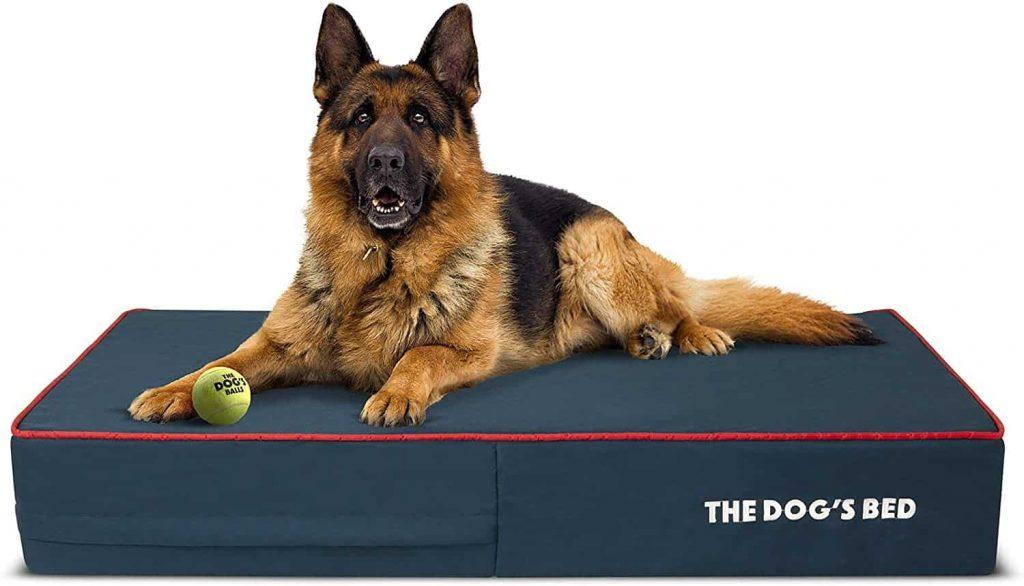 Brindle Waterproof Orthopedic Best Waterproof Memory Foam Dog Bed
